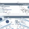 AutoDNA aruanne: kuidas seda lugeda, milline on selle väärtus ja miks on vaja seda osta